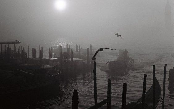 Tra sole e nebbia