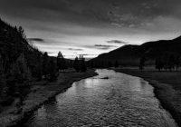 Nel fiume del tempo